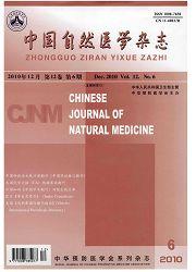 中国自然医学杂志
