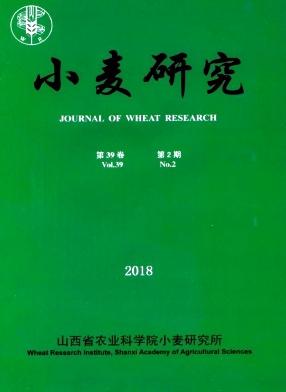 小麦研究杂志
