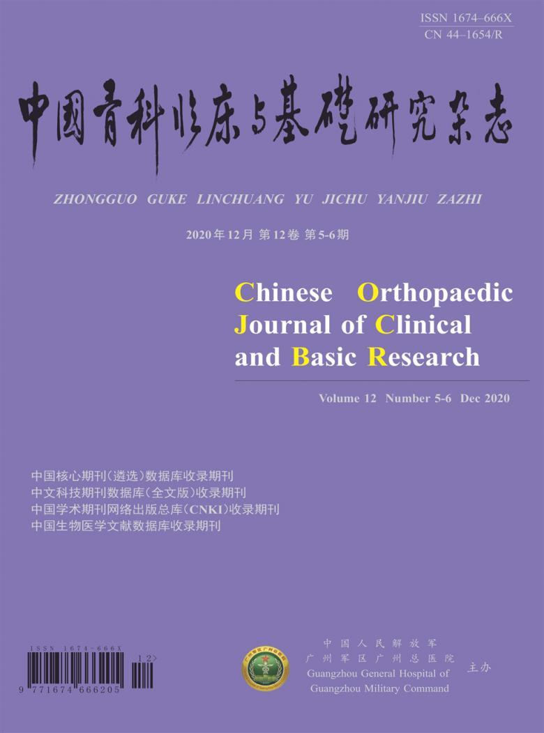 中国骨科临床与基础研究