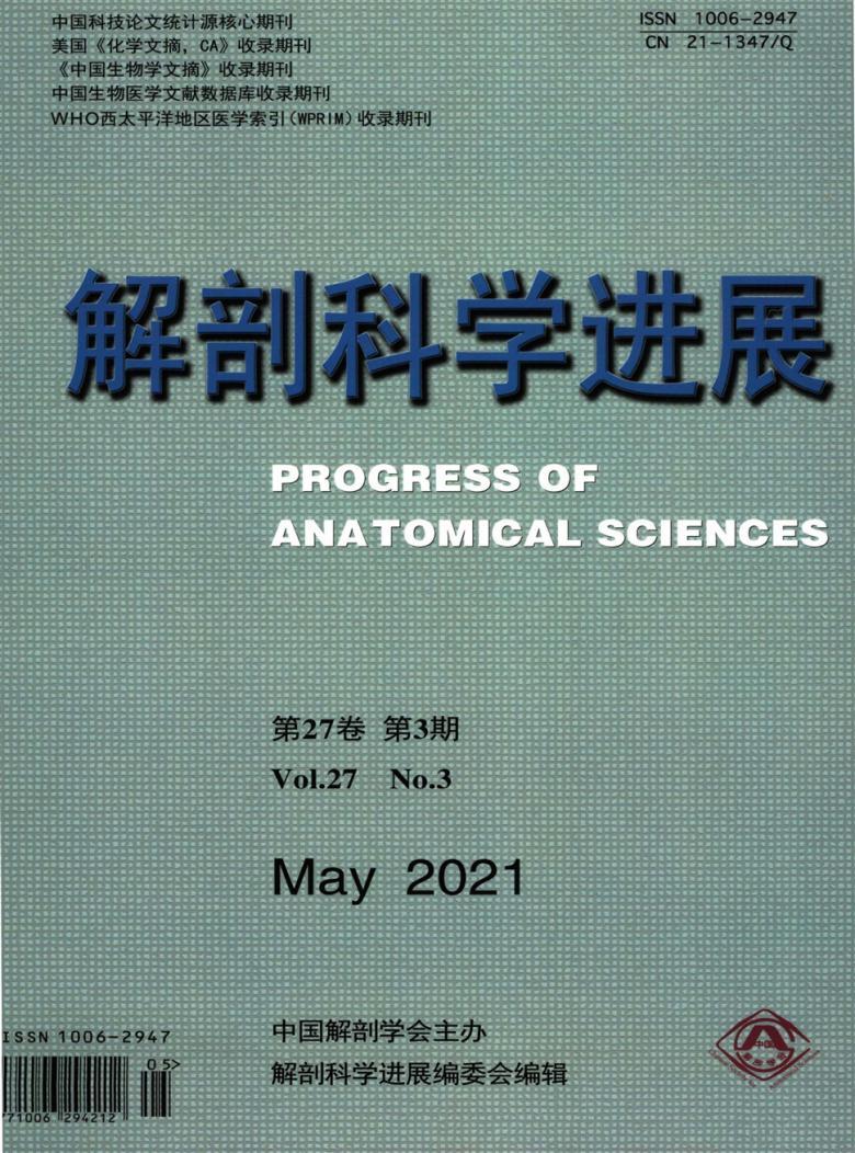 解剖科学进展杂志