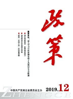 中国公共政策分析杂志
