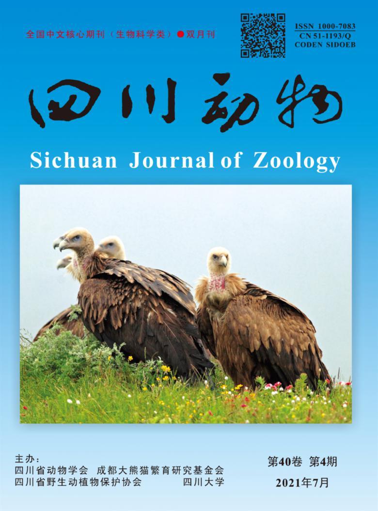 四川动物杂志