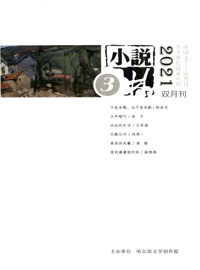 小说林杂志