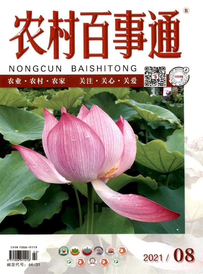 农村百事通杂志