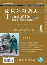 泌尿外科杂志