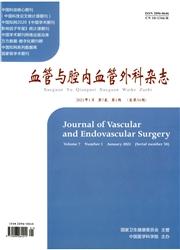 血管与腔内血管外科杂志
