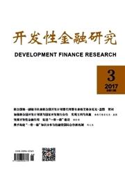 开发性金融研究