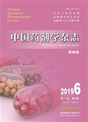 中国药剂学杂志