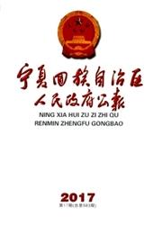 宁夏回族自治区人民政府公报杂志