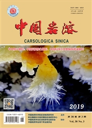 中国岩溶杂志