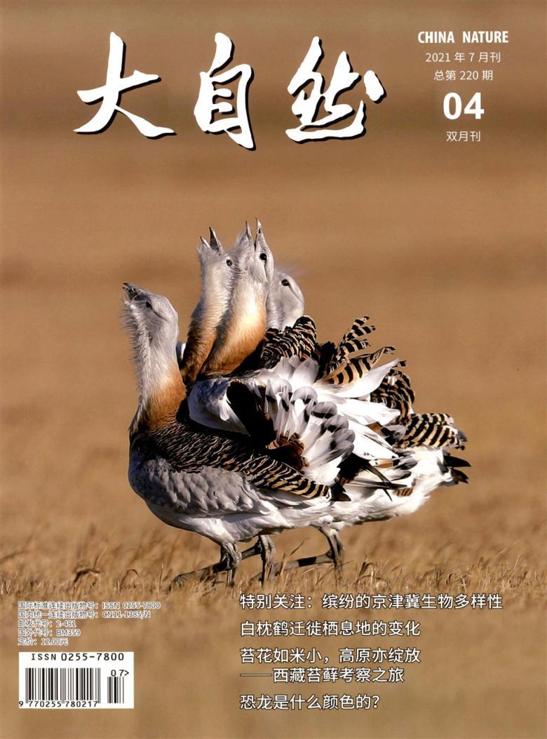 大自然杂志