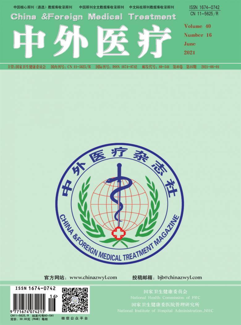 中外医疗杂志
