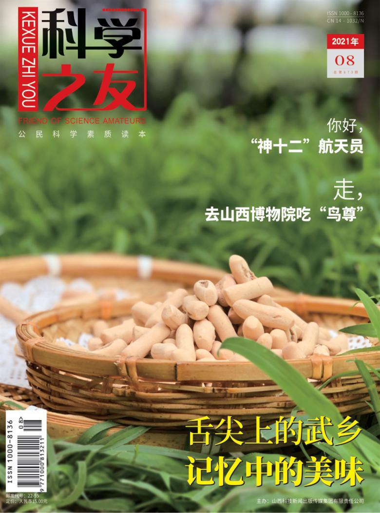 科学之友杂志