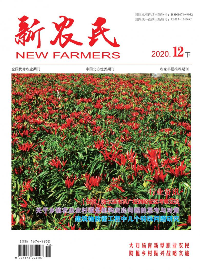新农民杂志