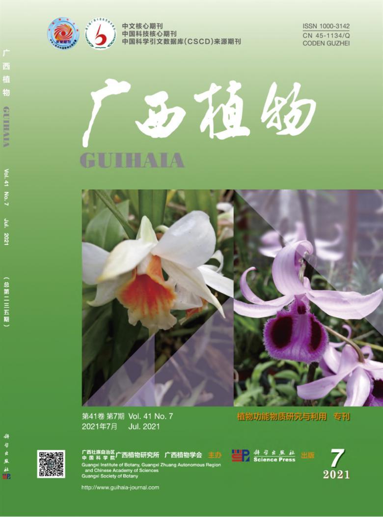 广西植物杂志