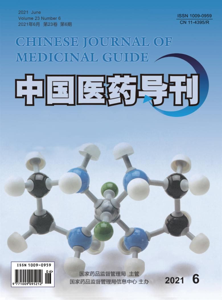 中国医药导刊杂志