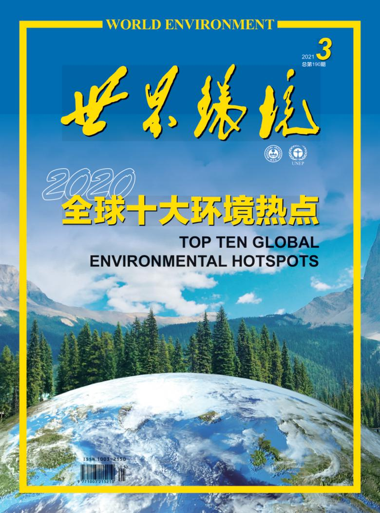世界环境杂志