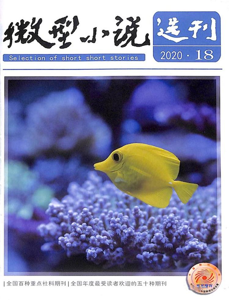 微型小说选刊杂志