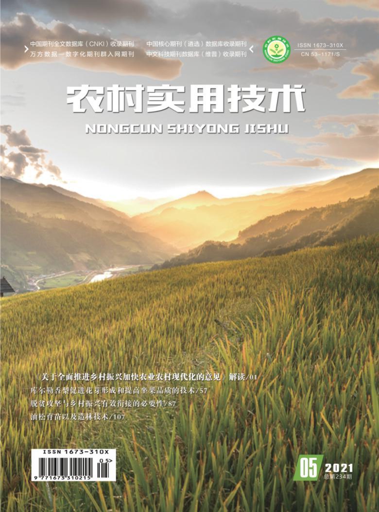 农村实用技术杂志