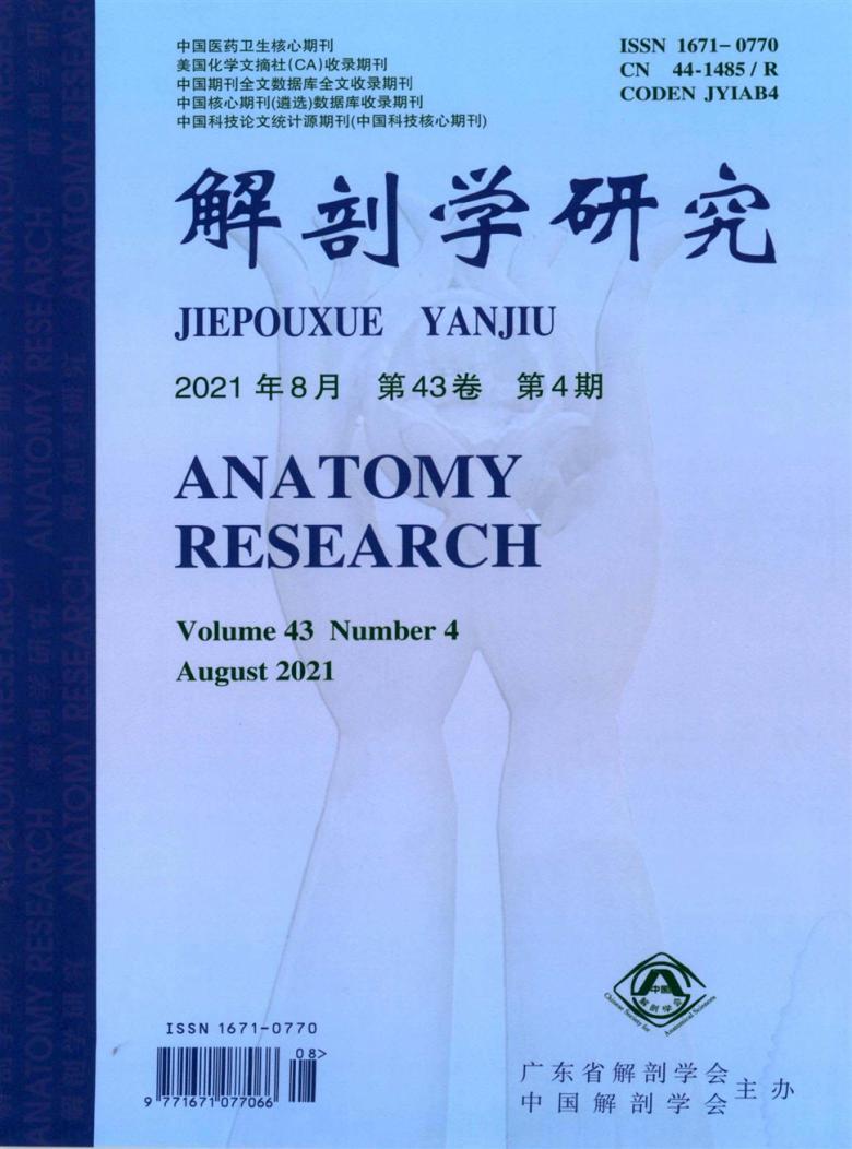 解剖学研究杂志