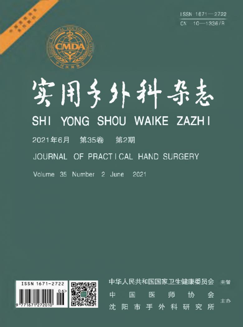 实用手外科杂志