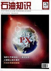 石油知识杂志