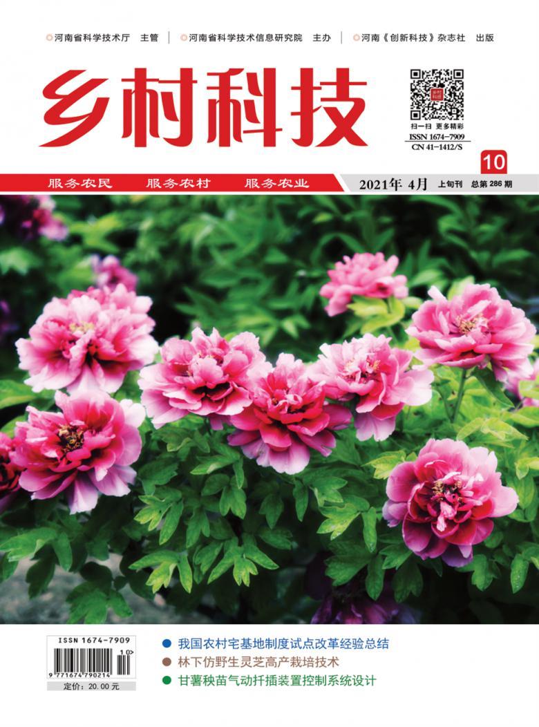 乡村科技杂志