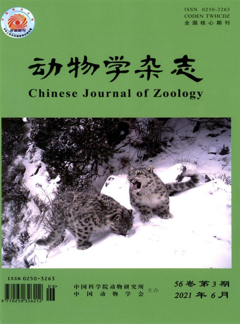 动物学杂志