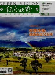 绿色视野杂志