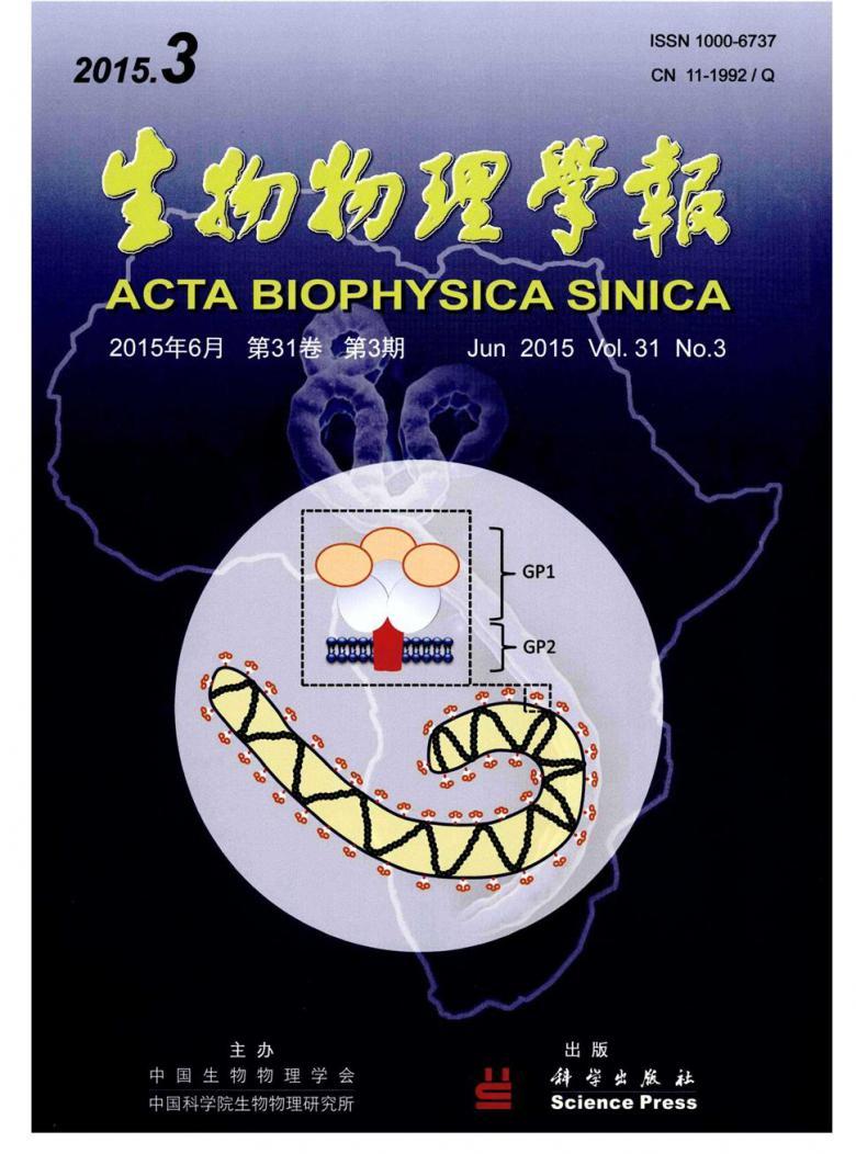 生物物理学报杂志