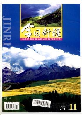 今日新疆杂志