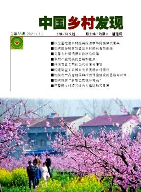 中国乡村发现