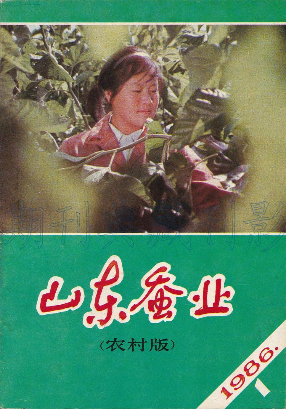 山东蚕业杂志